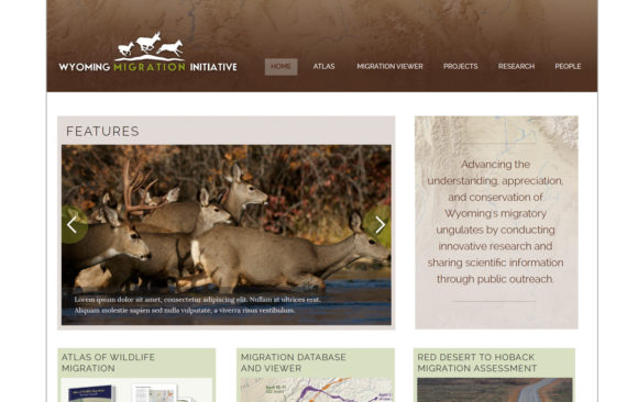 Migration Initiative website