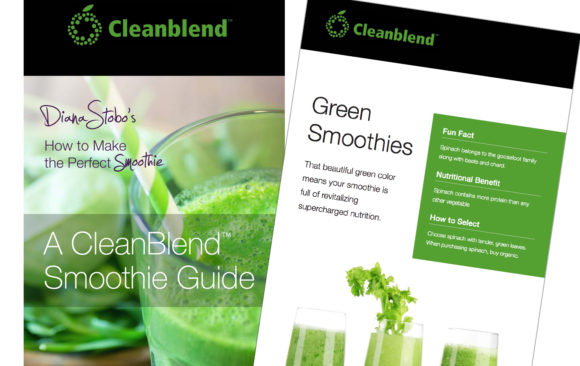 Cleanblend booklet