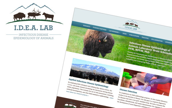 IDEA lab branding & website