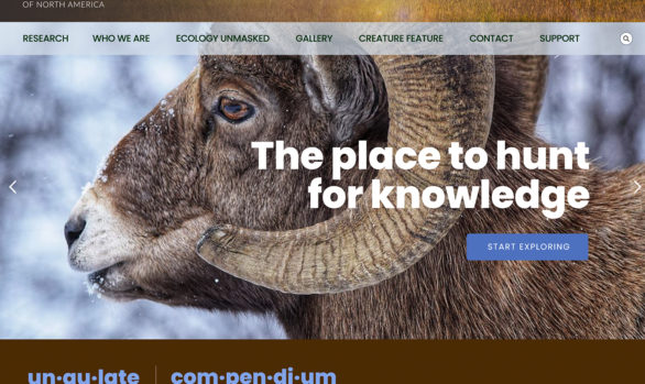 Ungulate Compendium website